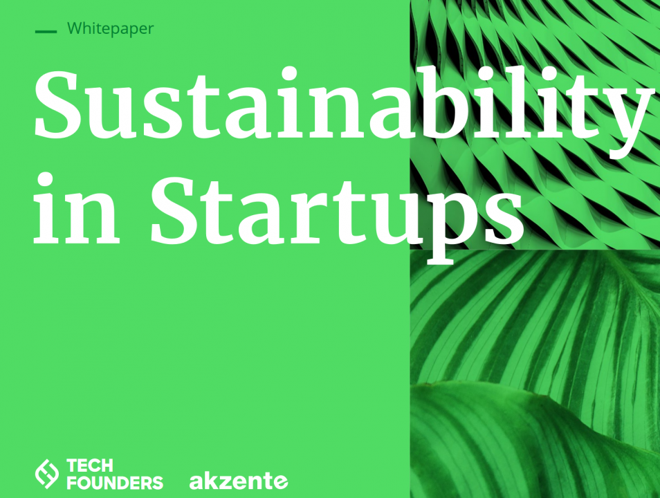 Whitepaper: Sustainability in Startups